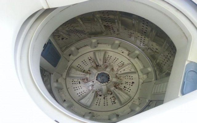 vệ sinh lồng máy giặt không đúng cách